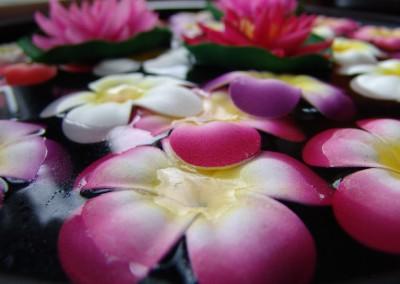Sala Thai Wellness Details